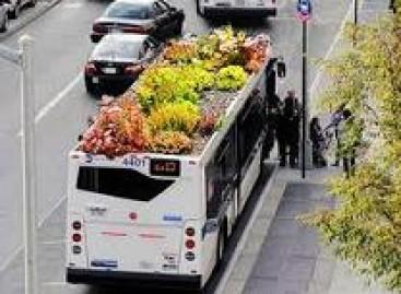 Autobusai žaliuojančiu stogu