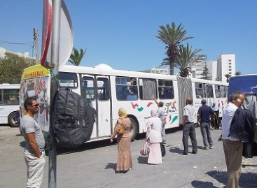 """Moteriški"" autobusai Egipte"