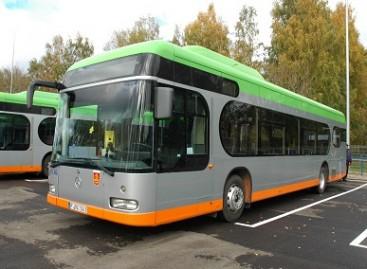 Klaipėdos stotelėse autobusai rikiuosis tvarkingai