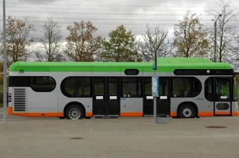 """""""Klaipėdos keleiviniam transportui"""" – dešimt"""