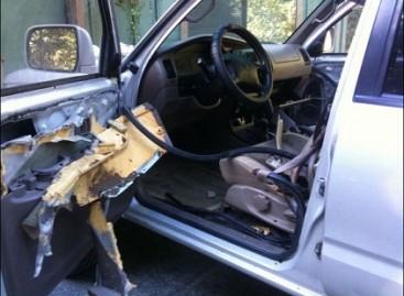 Kas nutinka, kai lokys užsimano automobilyje paliktų saulėgrąžų?