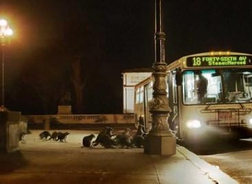 Naktiniai autobuso keleiviai