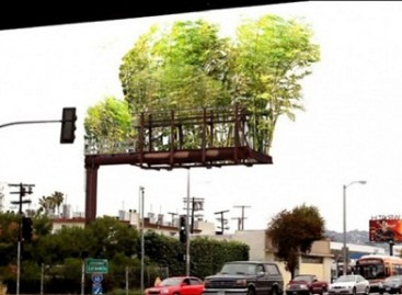 Bambukų giraitės – vietoj reklaminių skydų
