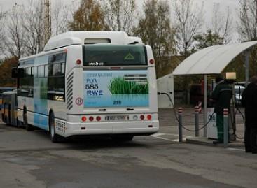 Sankt Peterburge – dujiniai autobusai
