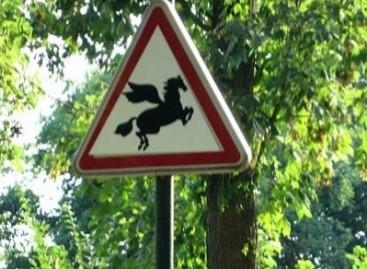 Keisti ir klaidinantys kelio ženklai