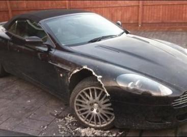 """Šuo apgraužė prabangų šeimininko """"Aston Martin"""""""