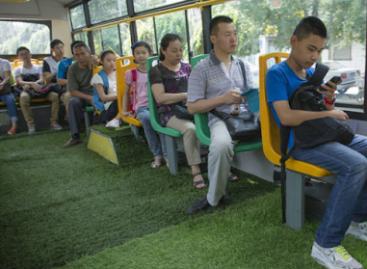 Autobuso salone… žolė