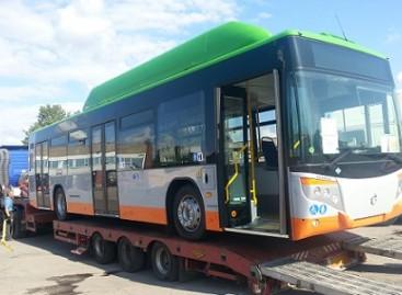 Ispaniški dujiniai autobusai – ir Klaipėdoje
