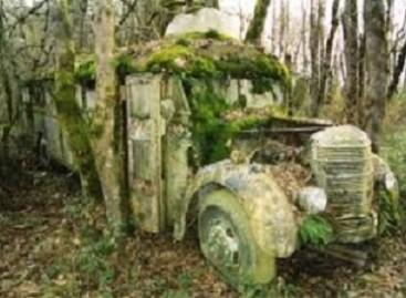 Gamta – prieš civilizaciją