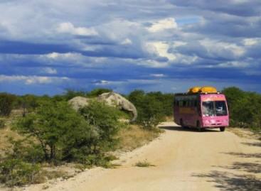 """Aplink pasaulį – rožiniu """"Scania"""" autobusu"""