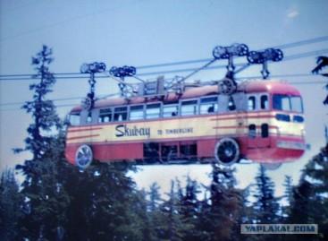 Dangaus autobusai