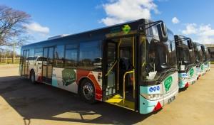 solaris-autobusi
