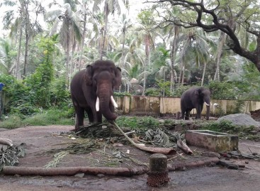 Kondugalūras: nepažintoji Indija