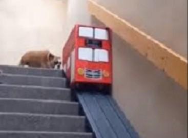 Laiptai – prasčiokams. Tikras džentelmenas važiuos autobusu
