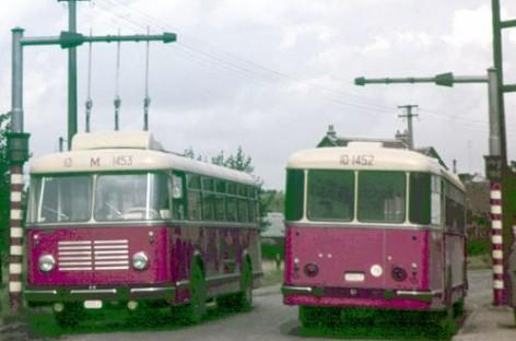 Neįprasta transporto priemonė – girobusas