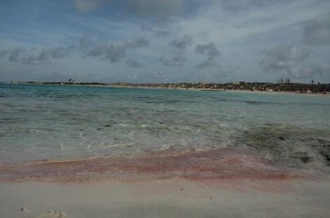Formentera – civilizacijos nepaliesta gamta ir nuostabaus grožio paplūdimiai
