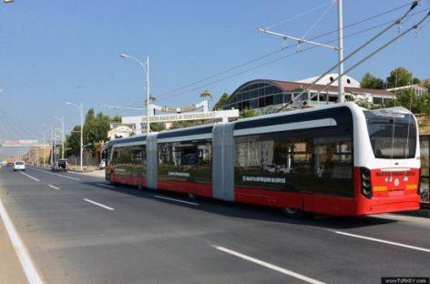 Turkijoje – tik moterims skirtas viešasis transportas