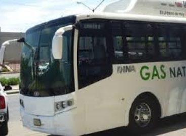 Dujiniai autobusai – Meksikai