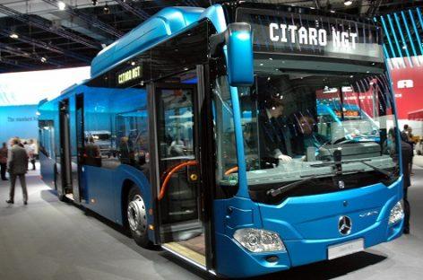 """Lenkijos miestams – 150 """"Mercedes-Benz"""" autobusų"""