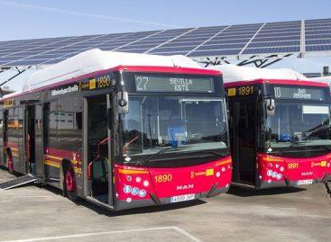 Ispanijos Sevilijos miestui – 100 SGD autobusų