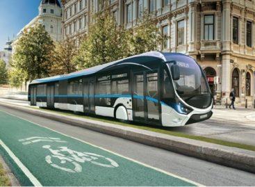 Dujiniai IVECO autobusai – Dramblio Kaulo Krantui