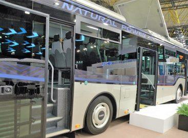 Kokiuose miestuose atsinaujina viešasis transportas?