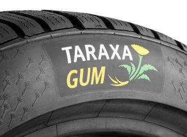 """Veiklą pradėjo """"Continental"""" gumos iš kiaulpienių tyrimų laboratorija """"Taraxagum Lab Anklam"""""""