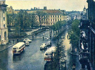 Vilniaus autobusų istorija 1951-1954-aisiais