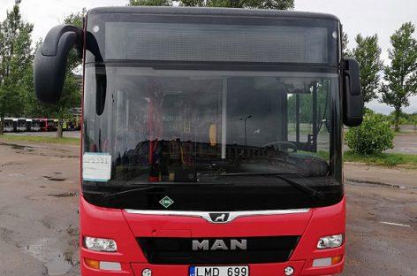 Į sostinę atvyko pailginti MAN autobusai