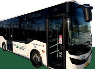 Minint keliaujančiųjų ir vairuotojų dieną, Naujosios Akmenės autobusai vežė nemokamai