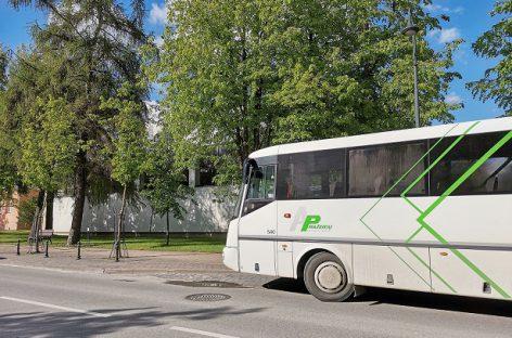 Mažeikių viešojo transporto maršrutai Visų Šventųjų dieną