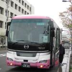 aut-japo2