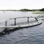 grazus-tiltai